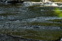 SlowStream